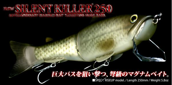 Immagine di New Silent Killer 250
