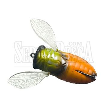 Immagine di Cover Cicada Big